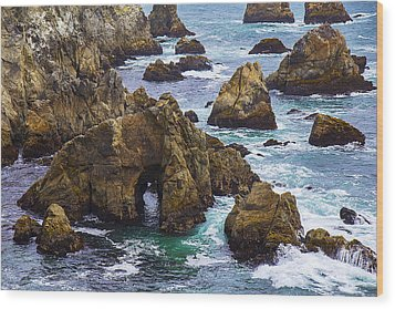 Bodega Head Wood Print by Garry Gay