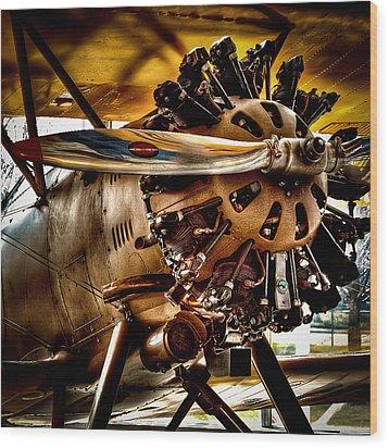 Boeing Model 100 Wood Print by David Patterson