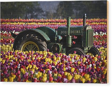 Bogged Down By Color Wood Print by Wes and Dotty Weber