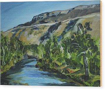 Boise River From Barber Park Bridge Wood Print