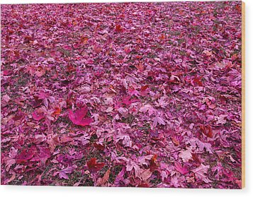 Pink Leaves Wood Print by Abdullah Alnassrallah