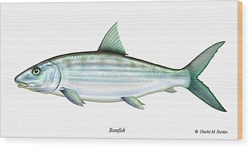 Bonefish Wood Print by Charles Harden