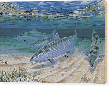 Bonefish Flats In002 Wood Print by Carey Chen