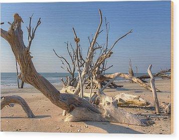 Wood Print featuring the photograph Boneyard Beach by Patricia Schaefer