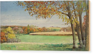 Bonjour Lands In Apple River Jo Daviess County Wood Print