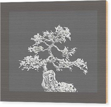 Bonsai II Wood Print by Ann Powell