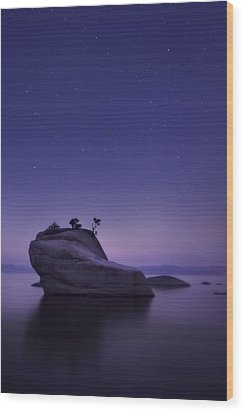 Bonsai Island Wood Print by Sean Foster