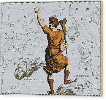 Bootes Constellation, 1687 Wood Print by Science Source