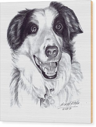 'border Collie' Wood Print by Barb Baker