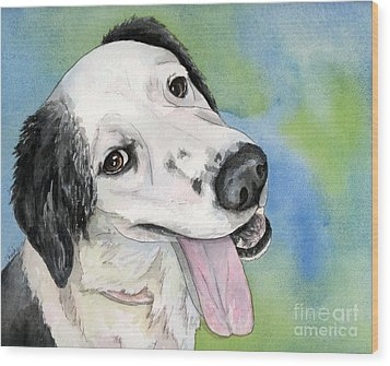 Border Collie Mix Dog Wood Print by Cherilynn Wood