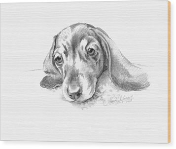 Bored. Little Dachshund Wood Print
