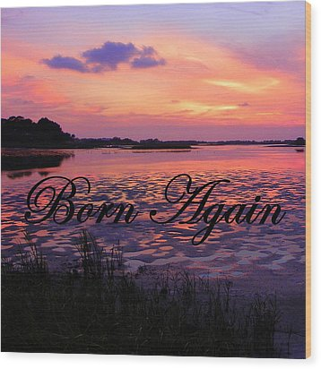 Born Again  Wood Print by Sheri McLeroy