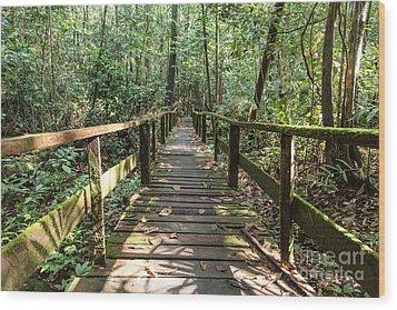 Borneo Jungle Wood Print