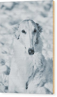 Borzoi Russian Hound Portrait Wood Print by Christian Lagereek