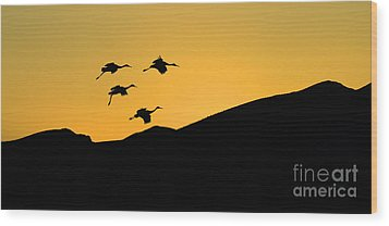 Bosque Del Apache Last Light Wood Print by Bob Christopher
