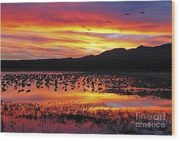 Bosque Sunset II Wood Print by Steven Ralser