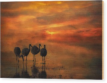 Bosque Sunset Wood Print by Priscilla Burgers