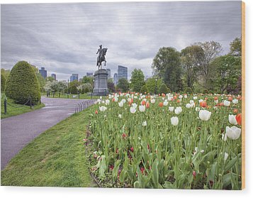 Boston Public Garden Wood Print by Eric Gendron