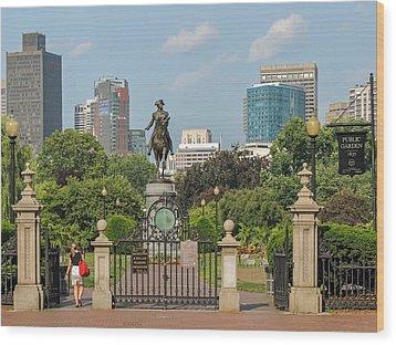 Boston Public Garden Wood Print