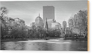Boston Sky From Public Garden Wood Print