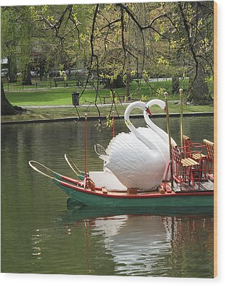 Boston Swan Boats Wood Print