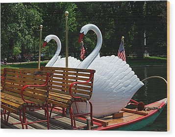 Wood Print featuring the photograph Boston Swans by Caroline Stella