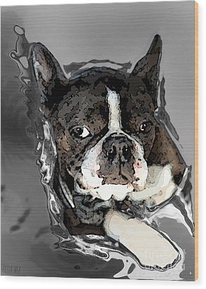 Boston Terrier.  Channeling Peter Lorre Wood Print by Peter Mix