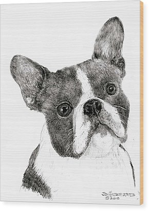 Wood Print featuring the drawing Boston Terrier by Jim Hubbard