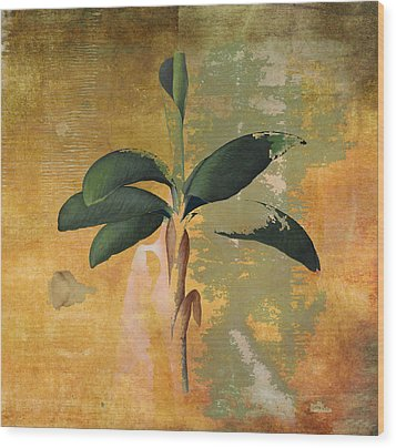 Botanical Banana Tree Wood Print
