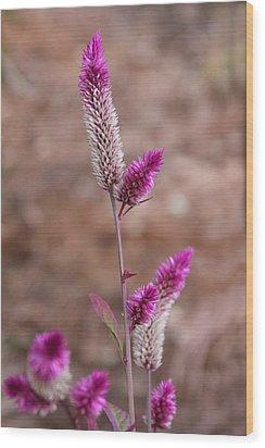 Botanical Bokeh Wood Print
