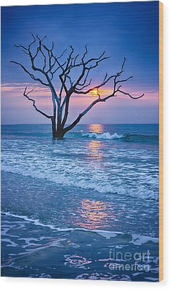 Botany Bay Sunrise 2 Wood Print