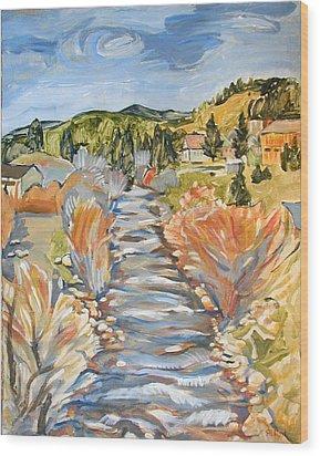 Boulder Creek Nederland Co Wood Print by Al Hart