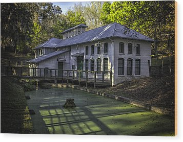 Boulware Springs Water Works Wood Print by Lynn Palmer