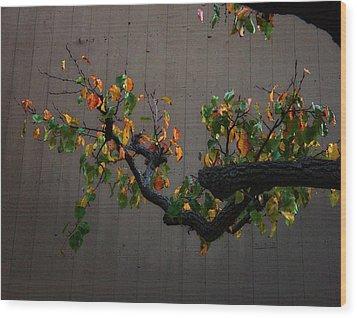 Bouquet From Autumn Leaves.three. Wood Print by Viktor Savchenko