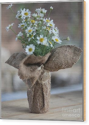 Bouquet Of Chamomile  Wood Print by Petko Pemaro
