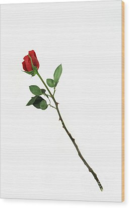 Bouquet Of Roses Art Wood Print by Boon Mee
