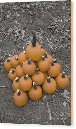 Wood Print featuring the photograph Bowling For Pumpkins by David Millenheft