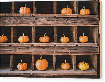 Boxed In Pumpkins Wood Print