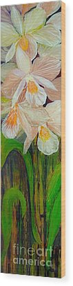 Boxed Orchids Wood Print