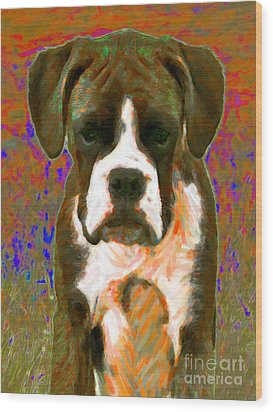 Boxer 20130126v1 Wood Print by Wingsdomain Art and Photography