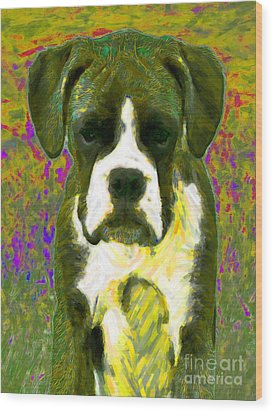 Boxer 20130126v2 Wood Print by Wingsdomain Art and Photography