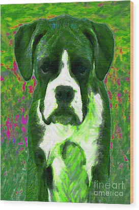 Boxer 20130126v3 Wood Print by Wingsdomain Art and Photography
