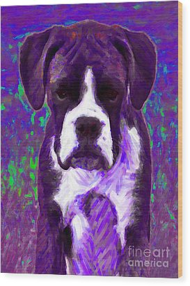 Boxer 20130126v6 Wood Print by Wingsdomain Art and Photography