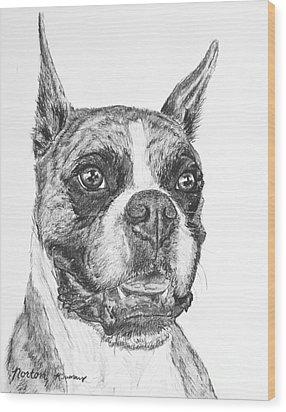Boxer Dog Sketch Wood Print by Kate Sumners