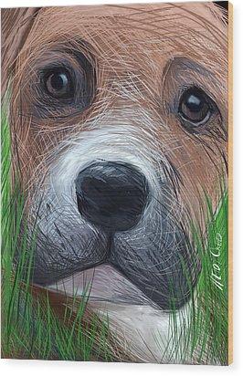 Boxer Wood Print by Heidi Creed