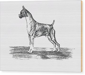 Boxer Wood Print by Joann Renner