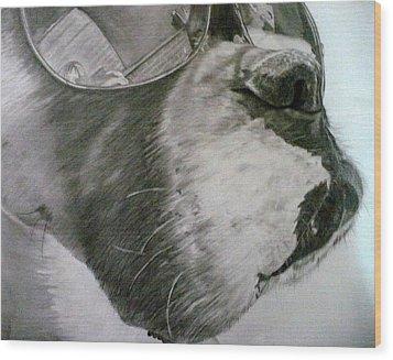 Boxer  Wood Print by Kelly Brown