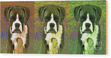 Boxer Three 20130126 Wood Print by Wingsdomain Art and Photography