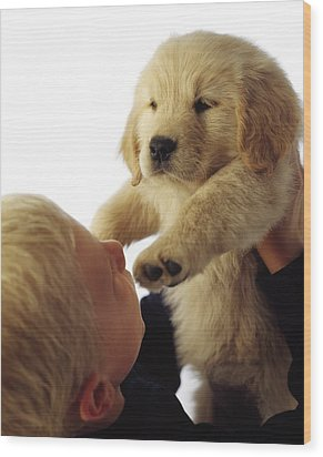 Boy Holding Puppy Up Wood Print by Ron Nickel