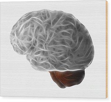Brain Wood Print by Michal Boubin